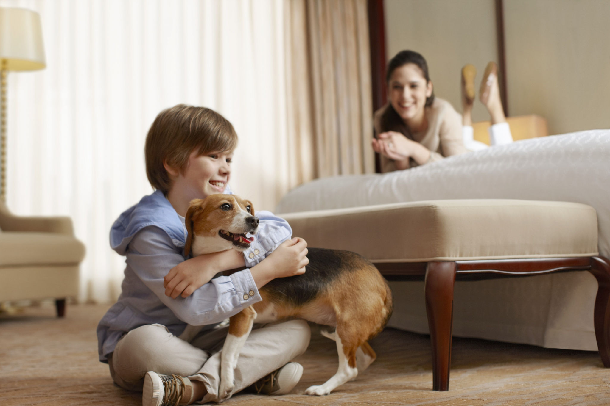 Hotel Features - Pet-Friendly Hotel